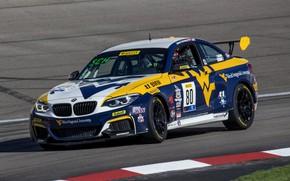 Picture asphalt, track, BMW, M240i, 2-series