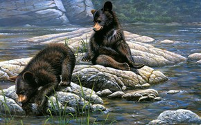 Picture water, nature, pose, river, stones, shore, figure, picture, bear, bears, art, pair, bear, painting, bears, …