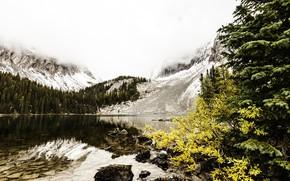 Picture autumn, nature, lake