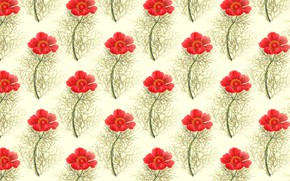 Picture BACKGROUND, TEXTURE, RED, FLOWERS