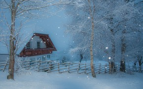 Picture winter, the sky, snow, trees, branches, house, the fence, treatment, the fence, the snow, birch, …