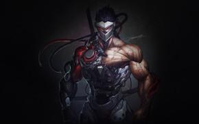 Picture Blizzard, Art, Illustration, Minimalism, Overwatch, Character, Game Art, Genji, Genji, HeeWonLee, by HeeWonLee, Genji Blackwatch