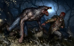 Picture basket, Night, Trees, Wolf, Male, werewolf