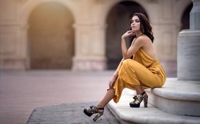 Picture pose, dress, brown hair, beauty, bokeh