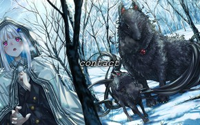 Picture winter, forest, girl, fantastic wolves