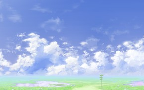 Picture road, summer, the sky, index
