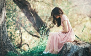 Picture forest, grass, trees, pose, model, stump, portrait, figure, dress, hairstyle, brown hair, sitting, in pink, …