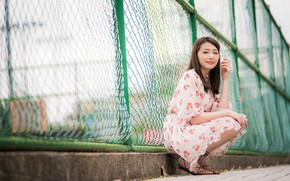 Picture pose, smile, model, the fence, portrait, makeup, dress, hairstyle, brown hair, legs, Asian, the sidewalk, …