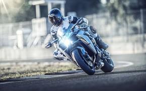 Picture Kawasaki, Kawasaki Ninja, 2019, 2019 Kawasaki Ninja H2