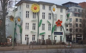 Picture flowers, house, Germany, Berlin