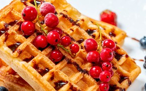 Picture berries, cookies, red, dessert, currants, waffles, cakes, jam, twigs