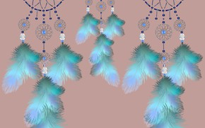 Picture feathers, ornament, catchdreams