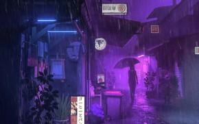 Picture girl, night, rain, street, umbrella, advertising, silhouette, signs