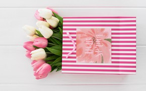 Picture gift, bouquet, tulips, bag
