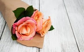 Picture roses, roses, bouguet, Olena Rudo
