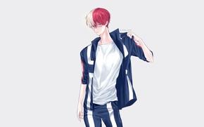 Picture guy, sweatshirt, Boku No Hero Academy, Todoroki Shoto, My Hero Academy