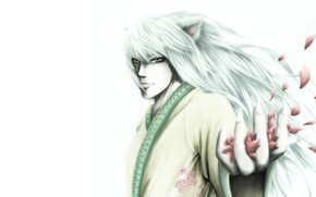 Picture look, hand, anime, petals, art, guy, Yu Yu No Where