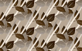 Picture leaves, branches, background, brown, beige