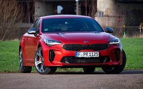 Picture red, lawn, KIA, Kia, the five-door, Stinger, Stinger GT, fastback, KIΛ