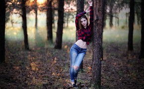 Picture girl, forest, trees, nature, photo, photographer, blue eyes, leaves, model, bokeh, jeans, brunette, belly, tummy, …