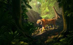 Picture nature, tiger, animal, predator, jungle, beast, illustration, digital art, 3D art, Ahmed Albastaki