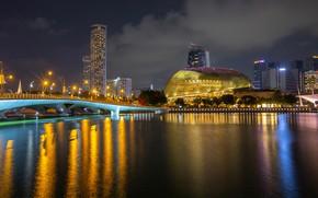 Picture night, bridge, lights, river, building, home, lights, Singapore, Merlion Park
