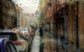 Picture girl, drops, rain, umbrella, Saint Petersburg, September