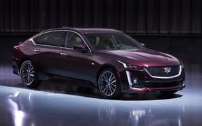 Picture Cadillac, 2020, Premium Luxury, CT5