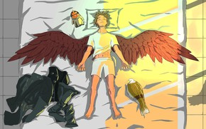Picture bird, wings, guy, My Hero Academia, Boku No Hero Academy, My Hero Academy