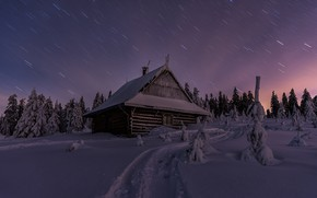 Picture winter, forest, snow, landscape, night, nature, house, track