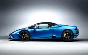 Picture Lamborghini, side view, Spyder, Huracan, 2020, RWD, Huracan EVO
