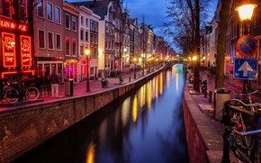 Picture trees, the city, street, home, the evening, lighting, Amsterdam, lights, channel, Netherlands