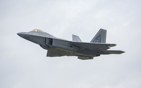 Picture flight, the plane, the gray sky, F-22A