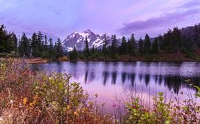 Picture trees, landscape, sunset, mountains, nature, lake, ate, USA, Mount Shuksan, Shuksan