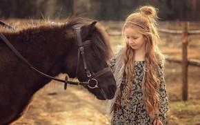 Picture animal, girl, pony, child, Victoria Dubrovskaya