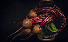 Picture leaves, vegetables, beets