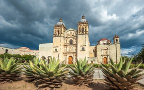 Picture the sky, the sun, clouds, trees, clouds, palm trees, Mexico, Church, temple, cacti, Santo Domingo, …
