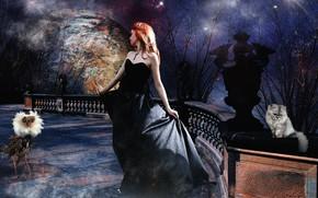 Picture girl, night, photoart