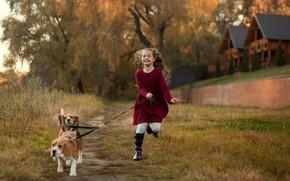 Picture autumn, animals, dogs, nature, home, girl, child, Beagle, Ekaterina Borisova