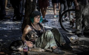 Picture girl, street, dog