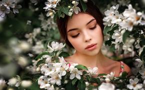 Picture girl, flowers, face, spring, flowering, Renat Fotov