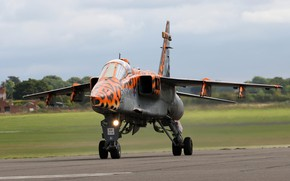 Picture Jaguar, Fighter-bomber, RAF, Sepecat Jaguar, Sepecat Jaguar GR3A