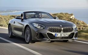 Picture sea, grey, coast, vegetation, BMW, Roadster, BMW Z4, M40i, Z4, 2019, G29