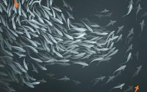 Picture fish, wall, mood, figure, art, art, panels, Alexander Khitrov, GaudiBuendia