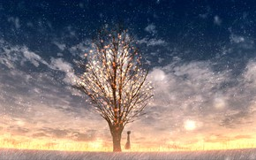 Picture snow, sunset, tree, girl