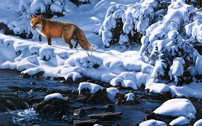 Picture winter, light, snow, branches, stones, shore, picture, art, Fox, the snow, red, painting, pond, Daniel …