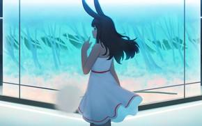 Picture girl, room, dandelion, rabbit, ears