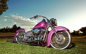 Picture Pink, Harley-Davidson, Motorcycle
