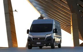 Picture grey, van, Fiat, The duchy