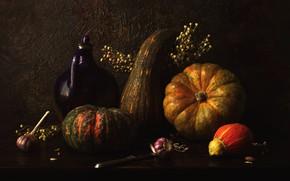 Picture bouquet, pumpkin, pitcher, still life, items, composition, garlic